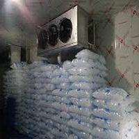 Câmara Fria Para gelo